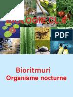 organisme_nocturne.prezentare.
