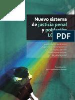 Nuevo sistema de justicia penal y poblaci__n LGBTTTI