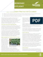 Best-Management-Practices-for-Cucumbers