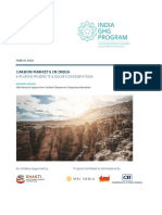Briefing-paper-Carbon-markets-in-India
