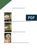 Data praktikum2 morfogenesis juwita fransiska