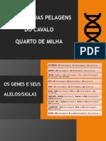 PDF GENÉTICA DAS PELAGENS DO QUARTO DE MILHA