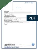 Rapport de stage 1ère année.pdf