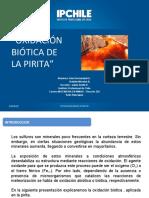 Oxidación Biotica Pirita