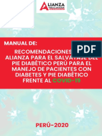 Manual Alpie Perú 2020.pdf