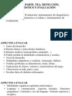 2.Diagnóstico y Evaluación. TEA