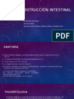 Obstrucción intestinal.pptx