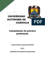 liniamientos de practicas (1).docx