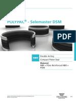 Piston DSM PDE