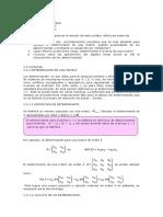 al m1 u2 determinantes (1).doc
