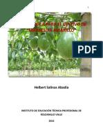 Guia_Maracuya-INTEP-2014.pdf
