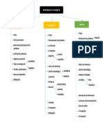 Mapa concetual_Metodologias de la investigación_Felipe Alvarez (1).docx