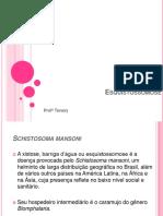 Aula 4 - Teníase.Esquistossomose (1).pdf