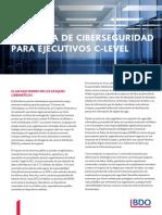 ADV_2020-Ciberseguridad-guia-para-Ejecutivos-C-Level (1).pdf