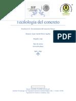 practia 13 Tecnología del concreto.docx