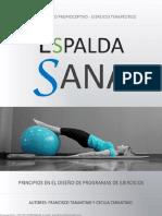 EspaldaSanaprincipioseneldiseodeprogramasdeejercicios.pdf