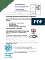 PROMOCION Y DEFENSA DE LOS DERECHOS A NIVEL INTERNACIONAL.docx