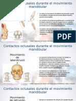 Contactos oclusales durante el movimiento mandibular.ppt