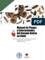 plagas bosque nativo