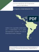 Análisis de las capacidades institucionales para el fortalecimiento de la gestión agroempresarial y asociativa