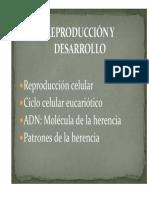REPRODUCCIÓN Y DESARROLLO 1.pdf