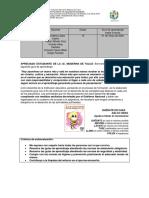 1587394816727_guía de aprendizaje humanidades 10.pdf