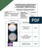 Actividad 1 labo Anticonceptivos.pdf