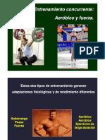 Entrenamiento Concurrente - Darío Cappa.pdf