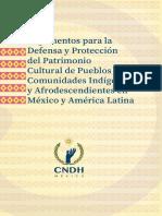 CNDH (2019) Argumentos-Indigenas-Afrodescendientes.pdf