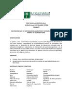 PRACTICA_DE_LABORATORIO_No_1_QUIMICA_PII09 (1)