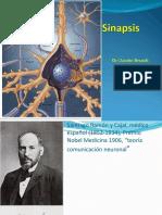 7 Sinapsis-CLAUDIO-2017.pdf