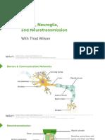 Slides_01_NervesNeurotransmission_NervousSystem(1).pdf