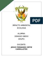 infografia del impacto ambiental