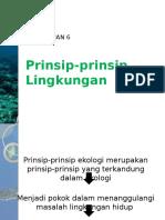 ppt prinsip-prinsip Lingkungan.pptx