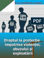 dreptul_la_protectie_clasa_a_via.ppt