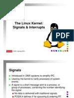 Signals and Interupts
