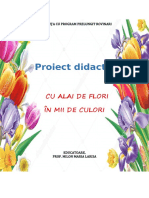 PROIECT-ALA-2-LARISA-2.docx