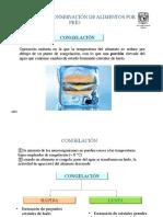 congelación.pdf