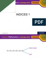 INDICES 1
