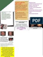 leaflet CA CERVIKS PUNYA VIYUN
