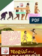 EVOLUCIÓN HUMANA liz