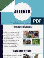Selenio Causas Final.pptx