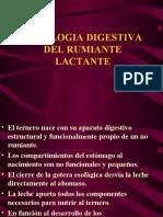 Fisiologia Digestiva Del Lactante