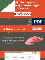 Estudio de impacto ambiental, metodología CONESA