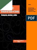 Bolivar Dir 2006 Identidades Culturales y Formación del Estado En Cbia