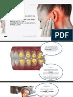 Drª Mara E-book - Você sabe qual é o tipo de  Disfunção Temporomandibular mais frequente e que corresponde a mais de 80% dos casos_.pdf