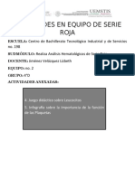 ACTIVIDADES 4 y 5 EN EQUIPO DE SERIE ROJA.docx
