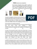 FICHA_2_HISTORIA_DE_LA_AMPOLLETA_