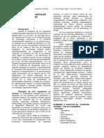 c14c.pdf