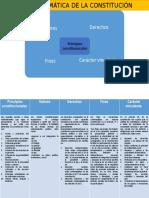 Matriz informativa-Parte dogmática de la constitución